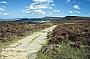 A stone-paved path leads across Scarth Wood Moor (Walk 15)