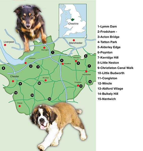Dog Walks North West Leicestershire