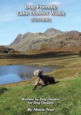 Dog Friendly Lake District Walks (Central)