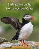 Birdwatching on the Northumberland Coast